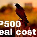 レバレッジドETFを含むS&P500に連動するETFの実質コストのまとめ